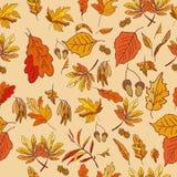 Composizione in autunno con le foglie di rosso e gialle Fotografia Stock Libera da Diritti