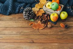 Composizione in autunno con le mele, foglie Fotografia Stock