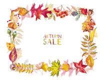 Composizione in autunno Pagina fatta delle bacche e delle foglie di autunno su fondo bianco Illustrazioni dell'acquerello Immagine Stock