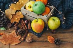 Composizione in autunno sopra fondo di legno fotografie stock