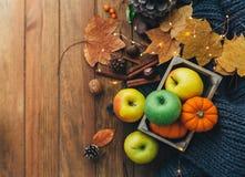Composizione in autunno sopra fondo di legno Immagini Stock Libere da Diritti