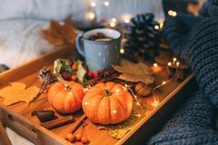 Composizione in autunno Tè e zucca caldi fotografia stock