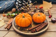 Composizione in autunno Zucca e cannella immagini stock libere da diritti