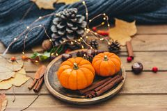 Composizione in autunno Zucca e cannella fotografie stock