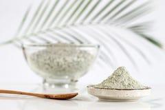 Composizione con argilla cosmetica Fotografia Stock