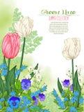 Composizione con i fiori della molla: tulipani, narcisi, viole royalty illustrazione gratis