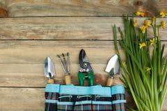 Composizione con i fiori e gli strumenti di giardinaggio sui precedenti di legno con spazio per testo fotografia stock libera da diritti