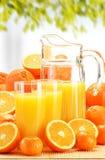 Composizione con i vetri di succo d'arancia e dei frutti Immagini Stock Libere da Diritti