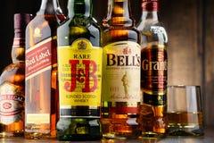 Composizione con le bottiglie delle marche popolari del whiskey Fotografia Stock Libera da Diritti