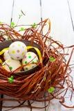 Composizione con le uova di Pasqua ed i nastri in nido, sulla parte posteriore di bianco Fotografie Stock Libere da Diritti