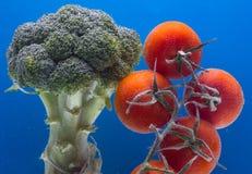 Composizione con le verdure organiche dei broccoli e del pomodoro Fotografia Stock