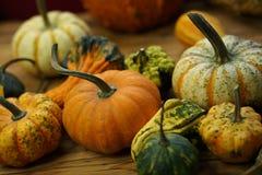 Composizione con le zucche di Halloween Fotografia Stock