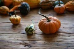 Composizione con le zucche di Halloween fotografia stock libera da diritti