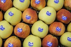 Composizione con varietà differente delle mele al mercato Marlene, sopportata nel 1995, è una del prima e marche più famose di me fotografia stock