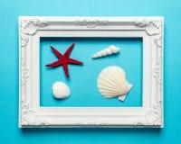 Composizione creativa nelle conchiglie con la struttura bianca su fondo blu Concetto minimo di estate fotografie stock libere da diritti