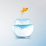 Composizione d'ebollizione nell'acquario del pesce illustrazione vettoriale