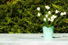 Composizione decorativa dei fiori selvaggi bianchi sul wo luminoso rustico immagini stock libere da diritti