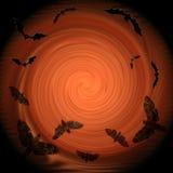 Composizione decorativa - i pipistrelli ed i lepidotteri volano nella luce Immagine Stock