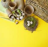 Composizione decorativa in Pasqua su un fondo giallo Nido con le uova di quaglie immagine stock