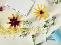 Composizione decorativa stagionale dei fiori selvaggi, delle bacche, della carta e delle matite, sale marino, blocco note su un f fotografia stock libera da diritti