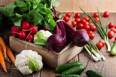 Composizione degli alimenti di varietà organica fresca delle verdure Fotografia Stock Libera da Diritti