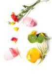 Composizione dei saponi fatti a mano, dei fiori e dell'erba immagine stock