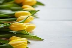 Composizione dei tulipani freschi disposti nella fila sulla tavola di legno rustica bianca fotografia stock