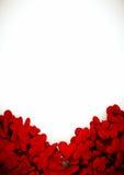 Composizione del biglietto di S. Valentino dei cuori con fondo bianco Immagini Stock