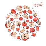 Composizione del cerchio di intere e mele affettate Schizzo disegnato a mano con le mele rosse isolate su fondo bianco illustrazione vettoriale