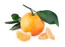 Composizione del mandarino con la foglia ed i segmenti Fotografia Stock