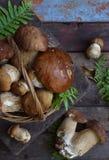 Composizione del porcini nel canestro su fondo di legno Funghi selvaggi commestibili bianchi copi lo spazio per il vostro testo Fotografia Stock Libera da Diritti