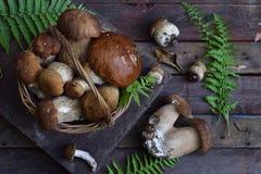 Composizione del porcini nel canestro su fondo di legno Funghi selvaggi commestibili bianchi copi lo spazio per il vostro testo Fotografia Stock