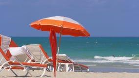Composizione del sud 4k S.U.A. nell'ombrello di spiaggia di Miami di giorno di estate stock footage