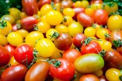 Composizione della frutta e del fondo delle verdure Fotografia Stock