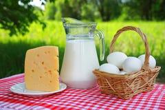 Composizione della prima colazione di una brocca di latte, un canestro delle uova e un pezzo di formaggio su un piatto su una tov fotografia stock