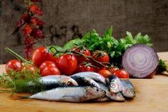 Composizione della sardina Fotografia Stock