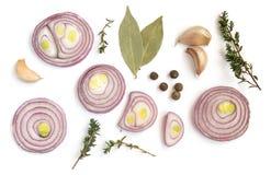Composizione delle cipolle rosse affettate e di varie spezie Immagini Stock Libere da Diritti