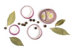 Composizione delle cipolle rosse affettate e di varie spezie Immagine Stock Libera da Diritti