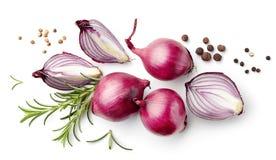 Composizione delle cipolle rosse e delle spezie Immagine Stock Libera da Diritti