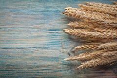 Composizione delle orecchie della segale del grano sullo spazio d'annata della copia del bordo di legno Immagine Stock Libera da Diritti