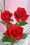 Composizione delle rose rosse Immagini Stock Libere da Diritti