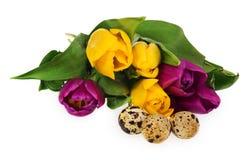 Composizione delle uova di Pasqua, fiori, tulipani Uova di Pasqua nel mult Immagine Stock
