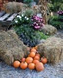 Composizione delle zucche, del fieno e dei fiori Immagini Stock Libere da Diritti