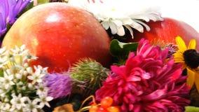 Composizione di Autumn Attribute video d archivio