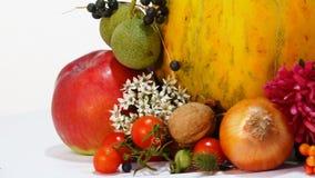Composizione di Autumn Attributes dei meloni insieme stock footage