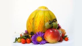 Composizione di Autumn Attributes insieme al melone archivi video