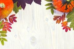 composizione di autunno della zucca delle foglie su fondo di legno bianco Immagine Stock Libera da Diritti