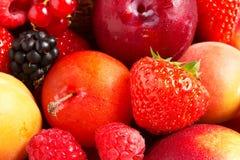 Composizione di frutta fresca Fotografie Stock