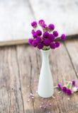 Composizione di piccoli, fiori delicati, meravigliosamente presentati sopra Immagini Stock Libere da Diritti