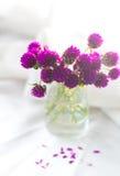 Composizione di piccoli, fiori delicati, meravigliosamente presentati sopra Fotografia Stock Libera da Diritti